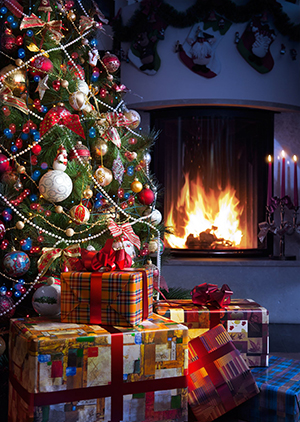 simple-holiday-tips-for-arizona-homeowners-during-the-christmas-season-taking-care-of-christmas-tree-and-making-sure-its-sturdy